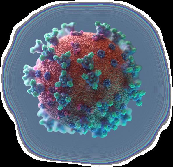 Repurposed Drugs for COVID-19 Treatment