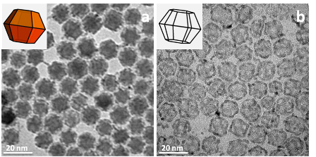 Nanoscale Cage-Structured Catalysts