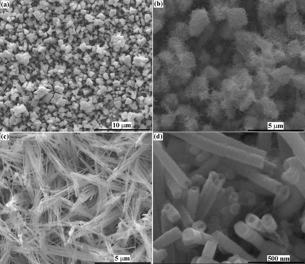 Rhenium Nanostructures and Electrodeposition