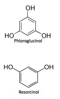 Biobased method to produce green phloroglucinol & Resorcinol