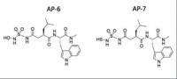 Glioblastoma Multiforme Sulphonamide Based Peptide MMP Inhibitors